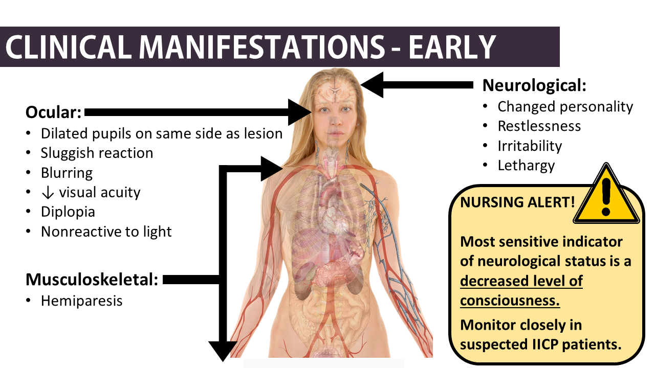 nclex type question Nclex-rn exam practice questions exam cram  because jaundice is often a  clinical manifestation of this type of anemia, what body part.